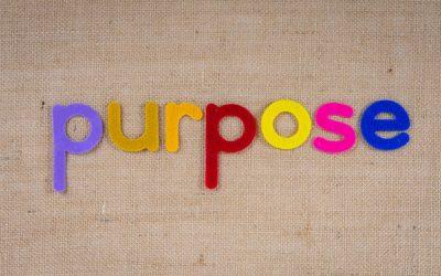 """Kommentar zu Adrian Strothottes Artikel """"Mit Holacracy zur Purpose Driven Organization? Über die Grenzen eines Organisationsmodells"""""""